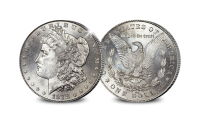 ---morgan-dollar---vzkz