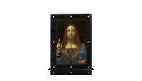 Salvator-Mundi-frame-voorz